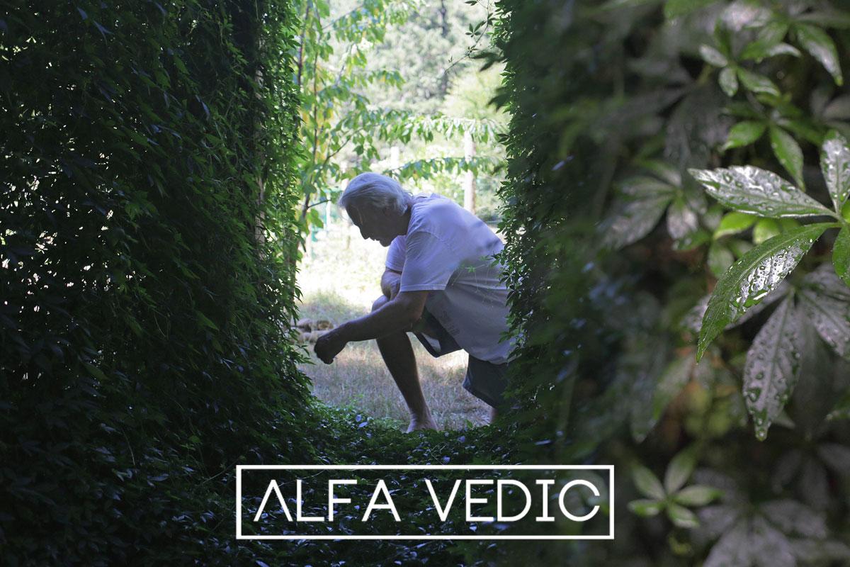 ALFA VEDIC